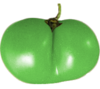 limegreentomatoes Avatar
