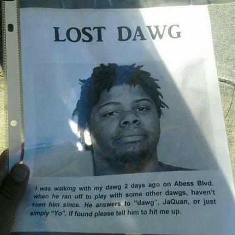 Can't find his dog.. Ummmmmmm, wow.. Can't find his dog Ummmmmmm wow