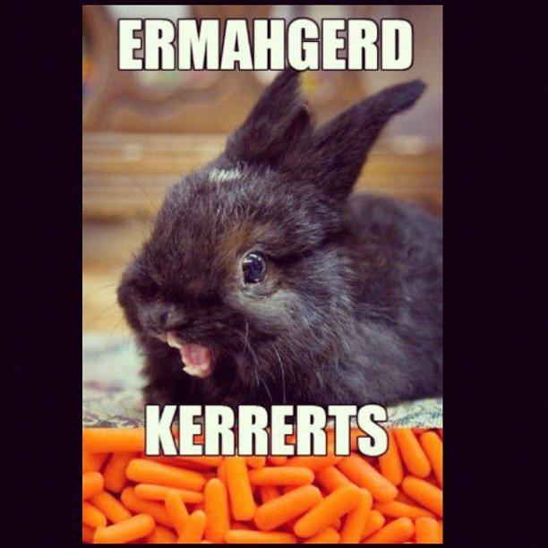 Carrots. . Carrots