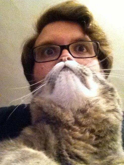 Catbeard. Not mine... I prefer Catman Cats cat beardm tags motherfucke