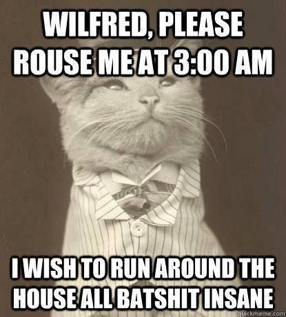 Cats. Source: Imgur. runs: Cats Source: Imgur runs: