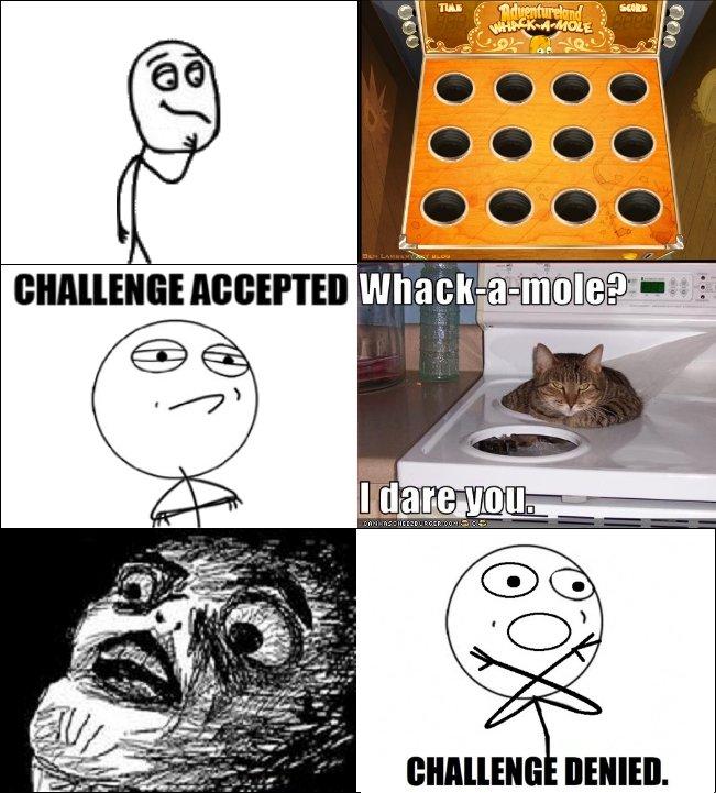 "Challenge accepted?. Challenge Denied!!!. Pt Cull ll Mill Elli' "". denied challenge accept"