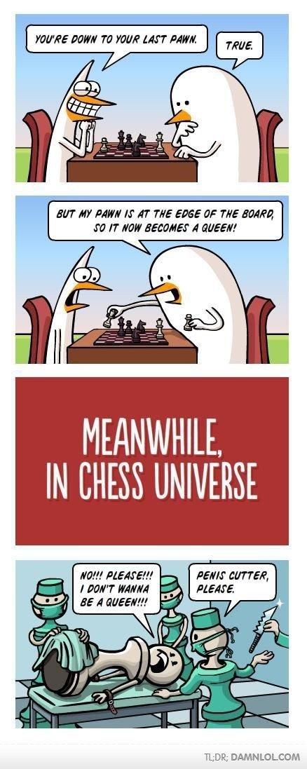 Chess. i love chess. TLDW.: DAMNLOL COM chess games universe hmm alternate