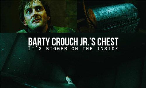 chest. . chest