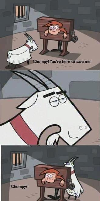 Chompy?? CHOMPY!. . chompy white viky