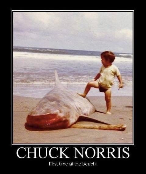 Chuck Norris. . Chuck Norris
