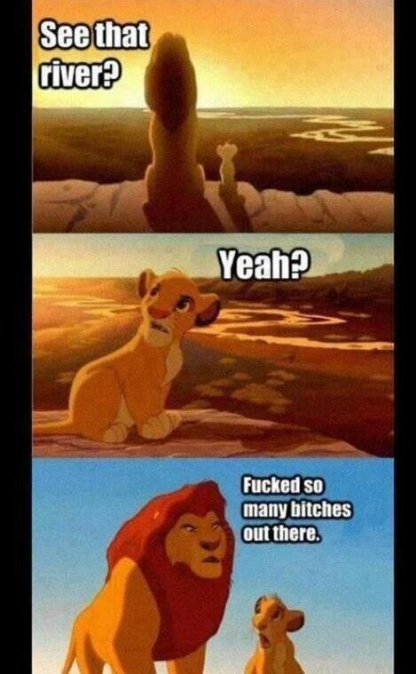 Classic Disney. .. simbas fw Disney Lions bitches