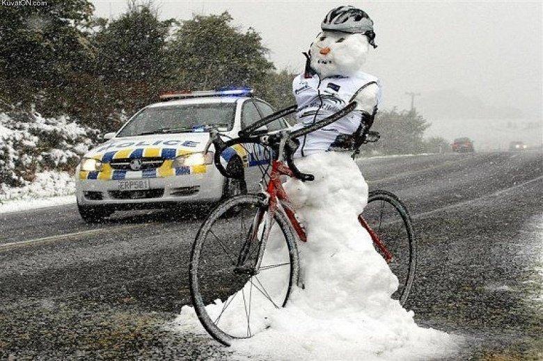 Cold girl on a bike. . Kuvasz. ;