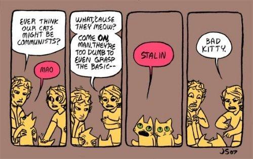 Communist cats. maooooooo . DEAR EMS Aili' meow mao cats co