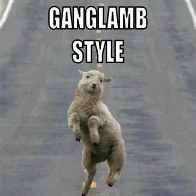 Ganglamb. . sun. god i love doing these ganglamb style gangnam