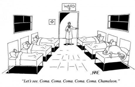"get it...?. . Let' ssee. Coma. Coma. Coma. Coma, Coma, Chameleon., "" get it ? Let' ssee Coma Chameleon """