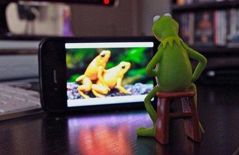 gettin froggy. . gettin froggy