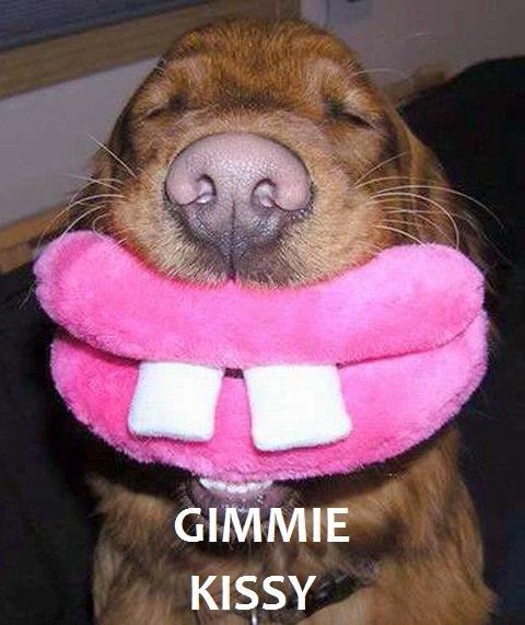GIMMIE KISSY. Smootchie smootchie.. GIMMIE KISSY Smootchie smootchie