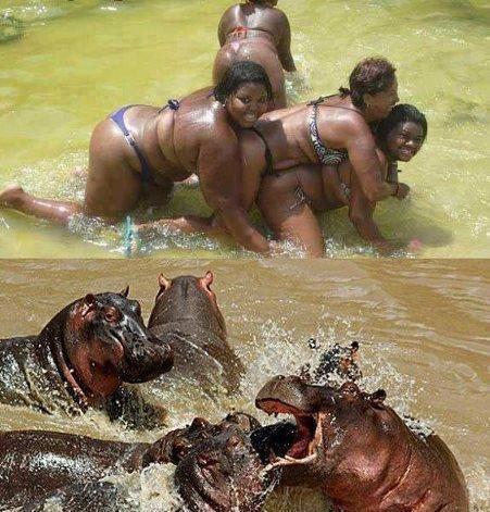 Girls Gone Wild. .