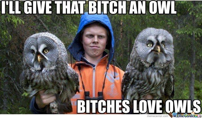 give that bitch an owl. . BITCHES um give that bitch an owl BITCHES um