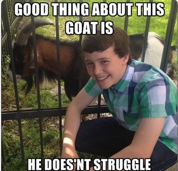 Goats. . Goats