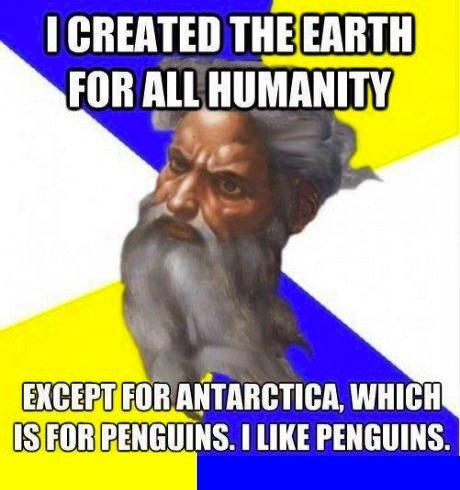 Gotta love them penguins.. . Gotta love them penguins