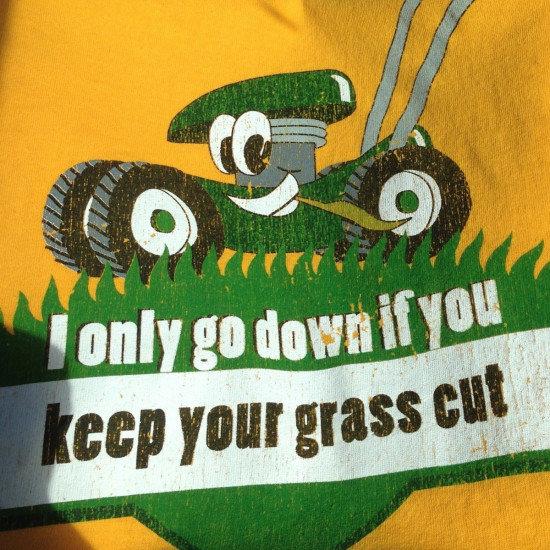 grass. . grass