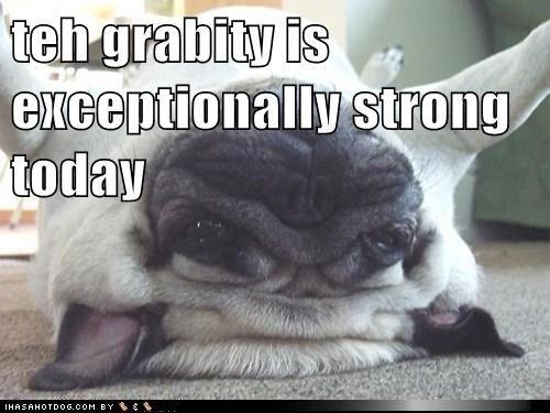 Gravity. . Gravity