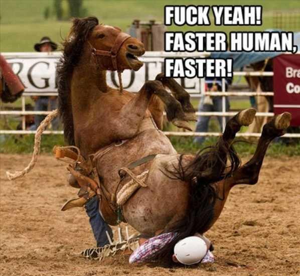 Great Ride. .. hows your leg!!? hows your leg, huh!? you ready to race!? dun dun dun tun da da dun ta da ta!