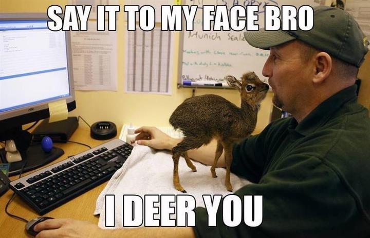 Oh Deer.... . w MI at an Atl. förfan jävla apskafft! dra ör helvöt! knäpp dä en kall å höll käftön! Deer pun