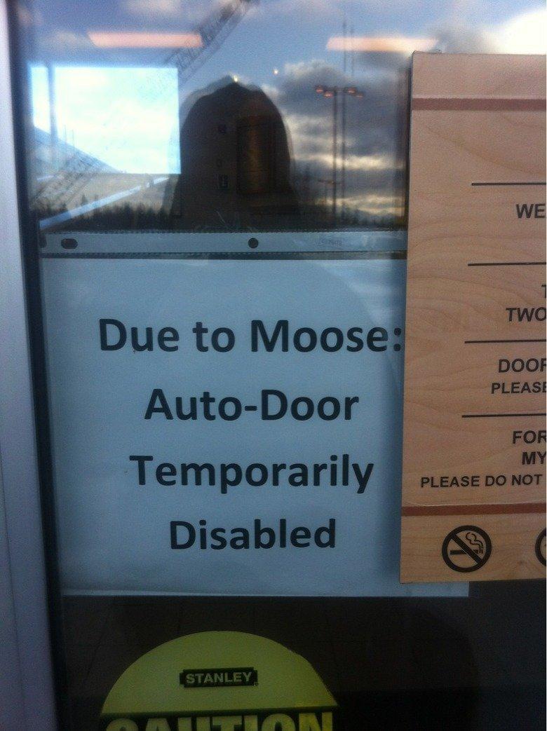 Only in Alaska. . Alaska
