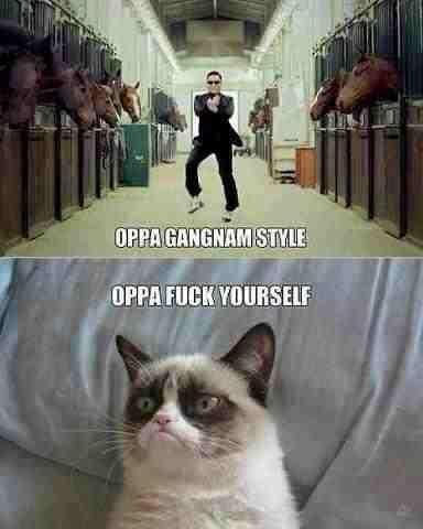 Oppa. Oh god, My sides. Oppa Oh god My sides