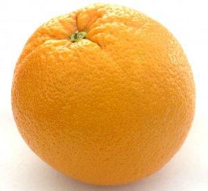 Orange you glad I didn't post a banana?. .. Y Orange you glad I didn't post a banana? Y