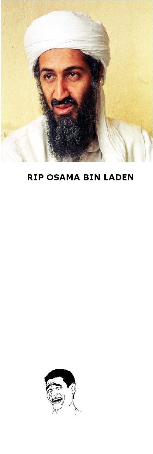 Osama Bin Laden dead. Osama bin laden died today. YAAAAAAAAAAAAAAAAAAAAAAAA. RIP OSAMA BIN LADEN osama bin laden dead