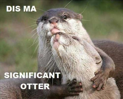 Otters. I love 'em.. Otters I love 'em