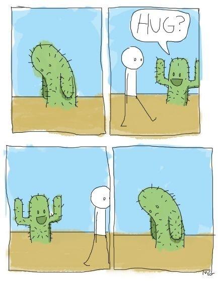 Sad cactus. A sad cactus. sad Cactus
