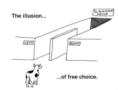 sad truth. . The illusion... ' free choice.. looks good to me sad truth The illusion ' free choice looks good to me
