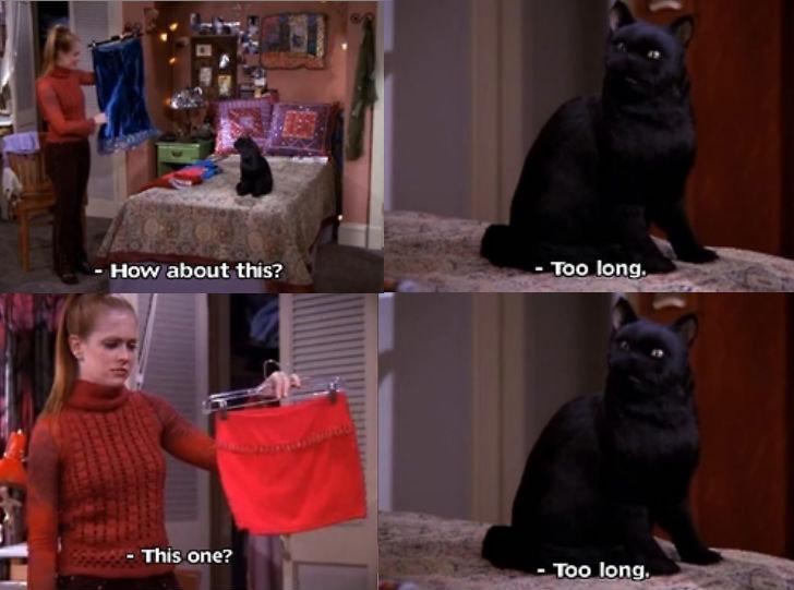 Salem you sly cat. Sabrina you better step up. I; E Ati tiss/ sabrina the teenage witch