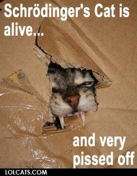Schrödinger's Cat is alive. run, bitch, run!. Schrodinger'' Cat is alive... and my pissed off Schrödinger's Cat is alive run bitch run! Schrodinger'' and my pissed off