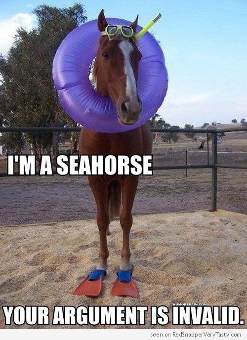 Sea Horse. . Sea Horse