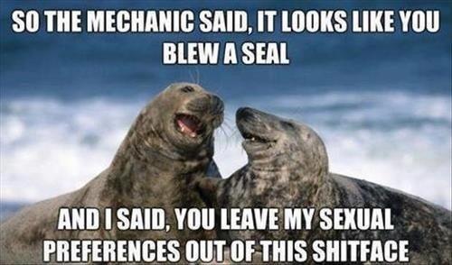 Seals. . so m SAID, IT UK! VIII] NEW A SEM. no I sum. mu slums: Seals so m SAID IT UK! VIII] NEW A SEM no I sum mu slums: