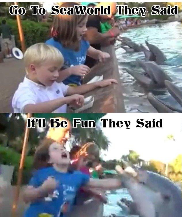 SeaWorl. 100% OC.