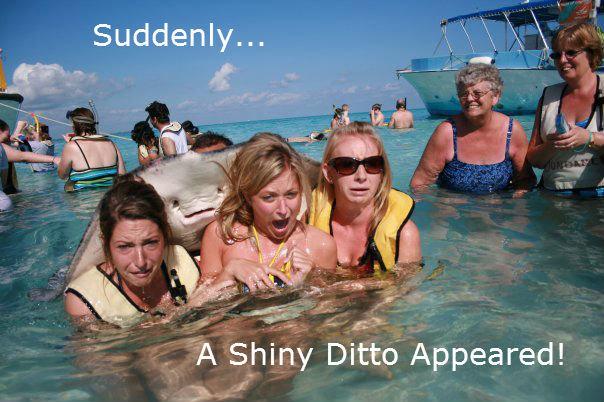 Shiny Ditto!. ...and then buttsecks. Casts.. 1 Shiny Ditto! and then buttsecks Casts 1