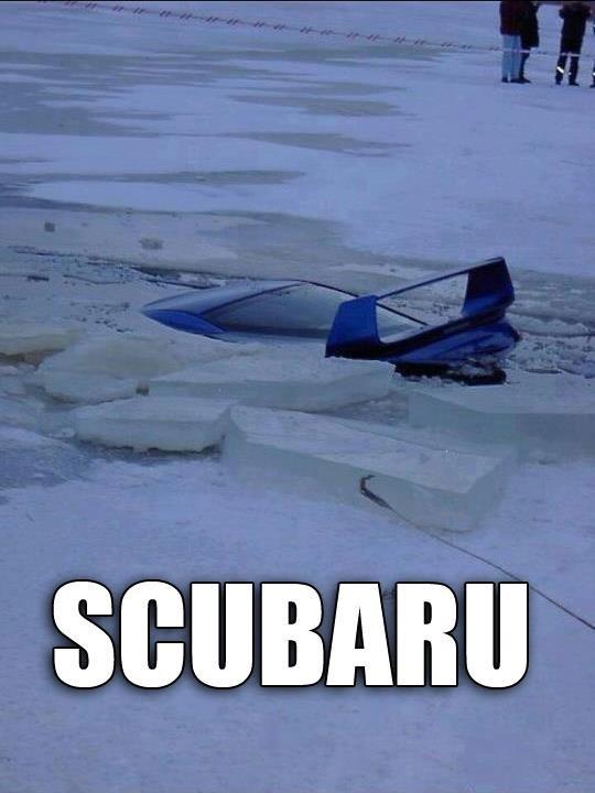 Should've got a Mitsuboaty. . Should've got a Mitsuboaty