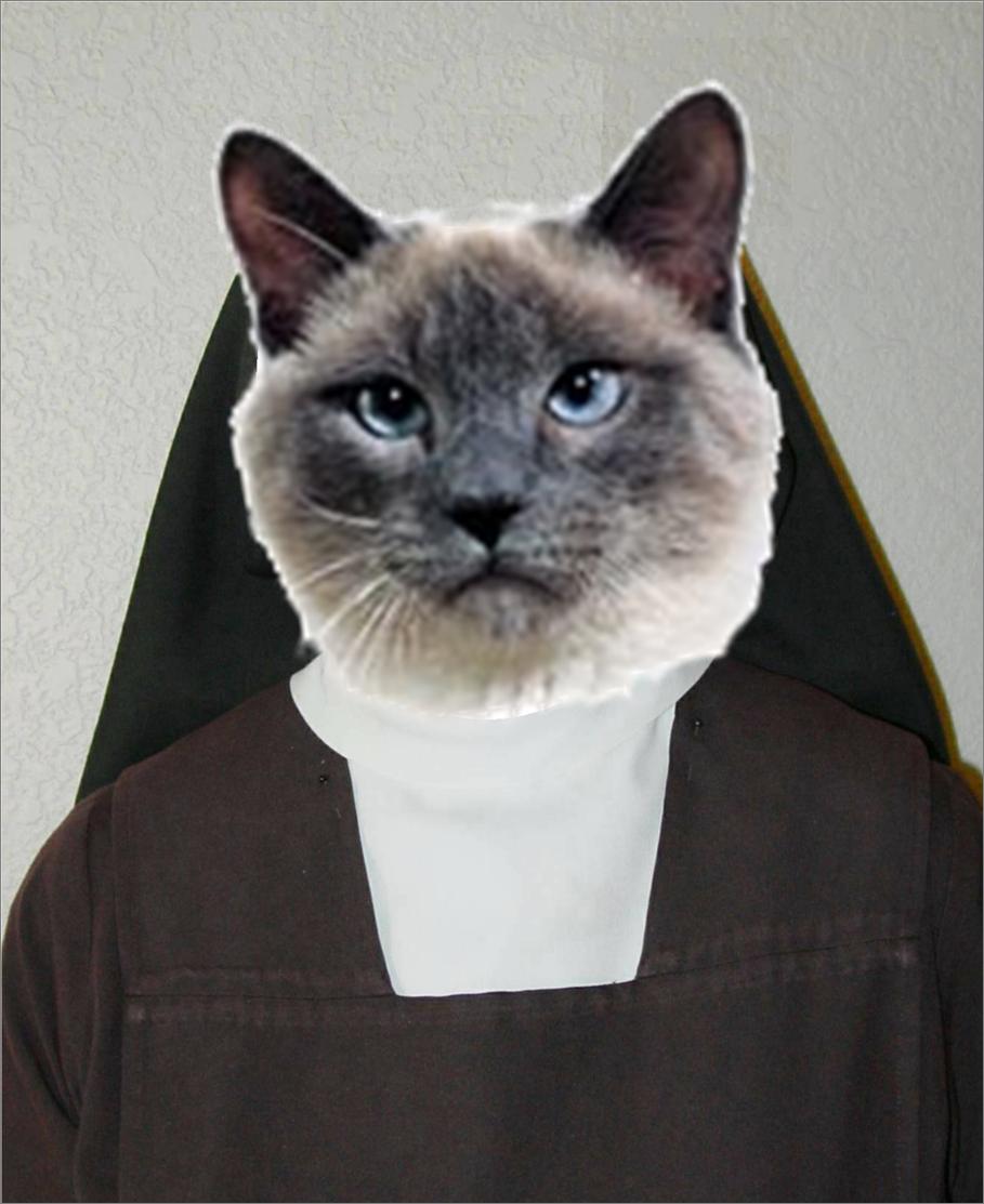 Sister Catresa. My profile picture.. cat Nun funny