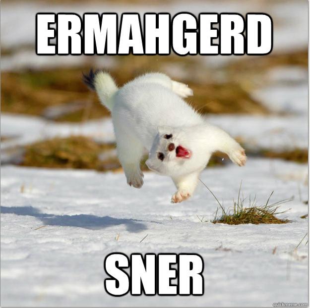 SNER!!!. . SNER!!!