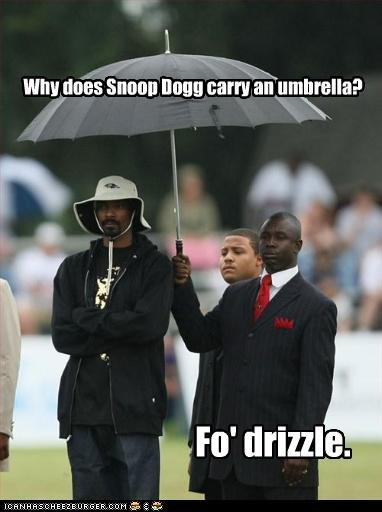 Snoop Dog. . isetta, viii' ii' my carry 'viii umbrella?. ahh clever.... very enjoyable :P snoop Dog