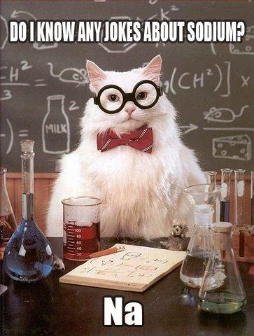 Sodium. . sodium joke cat