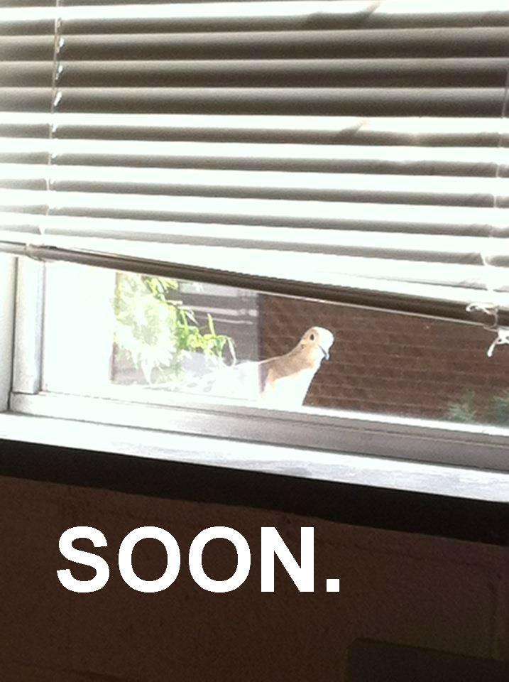 Soon. . Soon