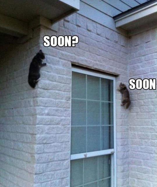 Soon?. . Soon?