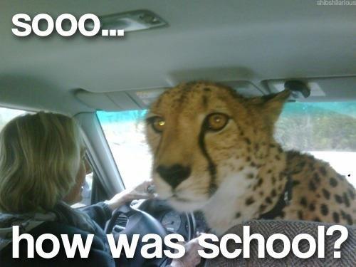 Soooo. .. Get in car, MFW Soooo Get in car MFW