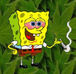 spongebong hemppants. . spongebong hemppants