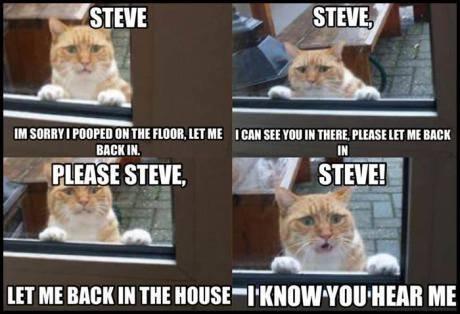 Steve Please!. . III WHEY I pam [EH MR ntl Mi, HIT ME I Ell too tlt TMM, PLEASE II] III. mm HT ME MN Ill m [MI ME Steve Please! III WHEY I pam [EH MR ntl Mi HIT ME Ell too tlt TMM PLEASE II] mm HT MN Ill m [MI