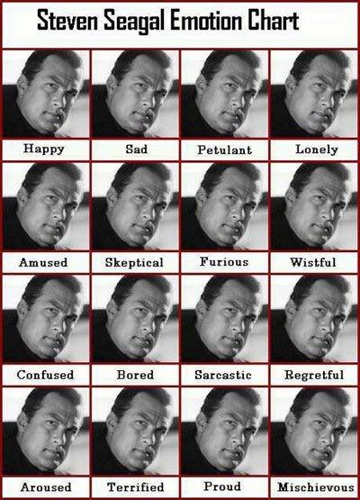 Steven Seagal emotional chart. .. pretty much the same with an Irish setter Steven Seagal emotional chart pretty much the same with an Irish setter