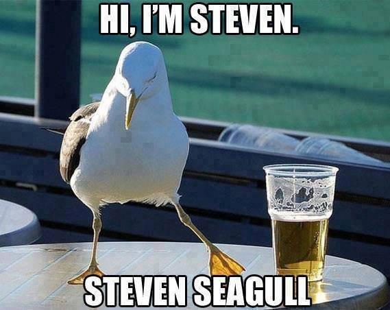 Steven. . i. III, PM STEVEN. Steven i III PM STEVEN